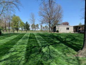 Professional lawn care Papillion Nebraska
