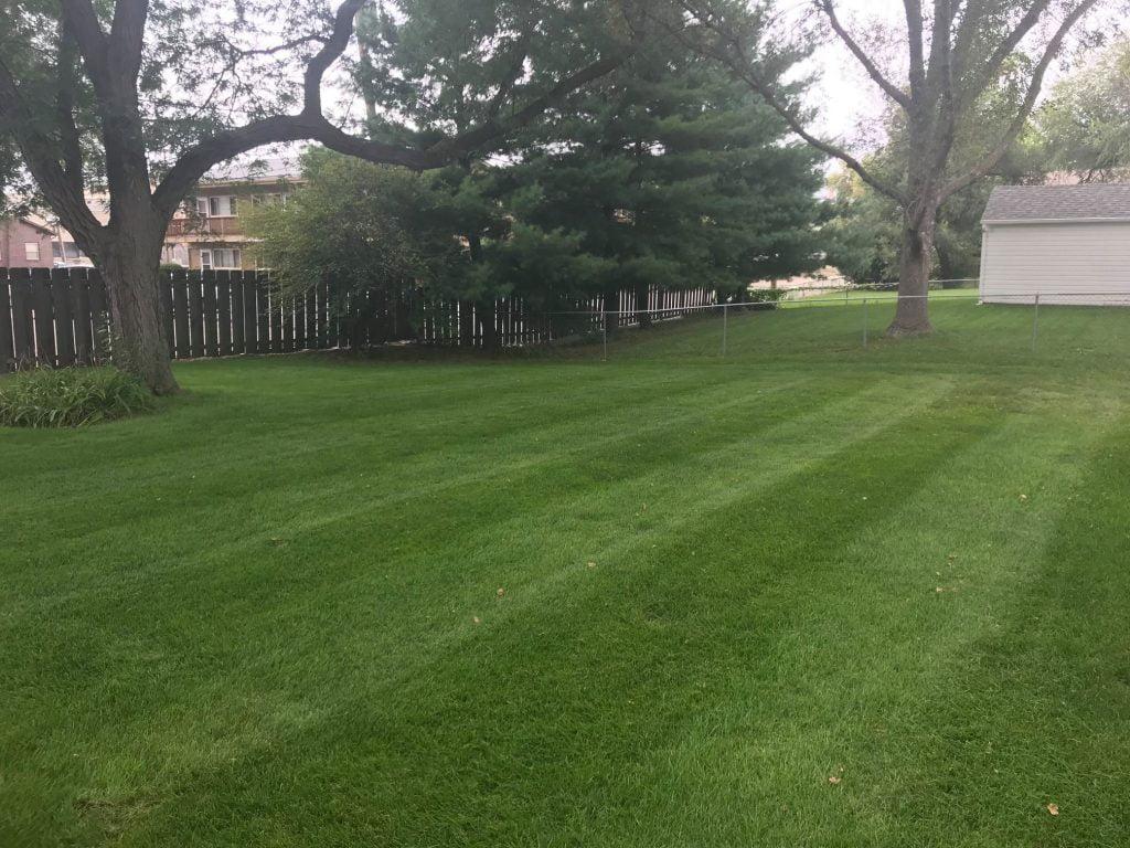 Lawn Mowing Backyard Papillion Nebraska