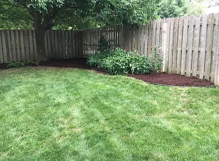 Mulch in backyard