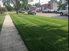 Commercial Lawn care services Papillion Nebraska