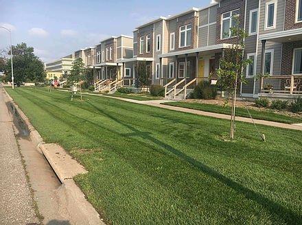 Home owners association lawn mowing Papillion Nebraska