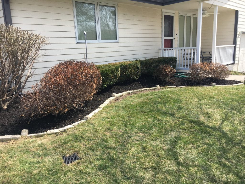 Front yard mulch bed with plants Papillion Nebraska