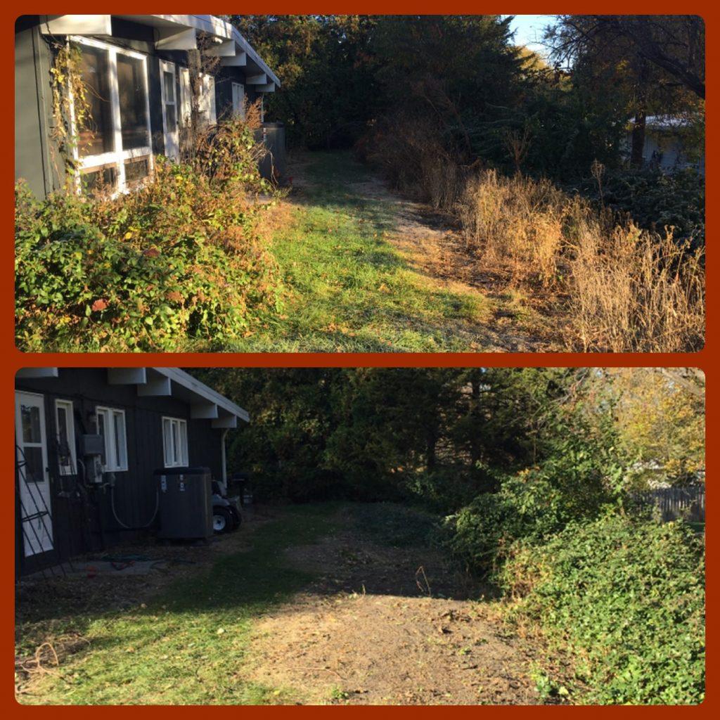 lawn-cleanup-papillion