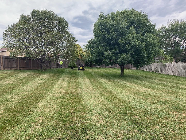 Lawn care Papillion Nebraska
