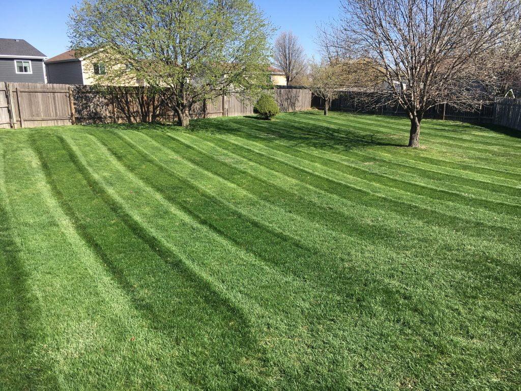 Residential lawn fertilizing customer Papillion NE