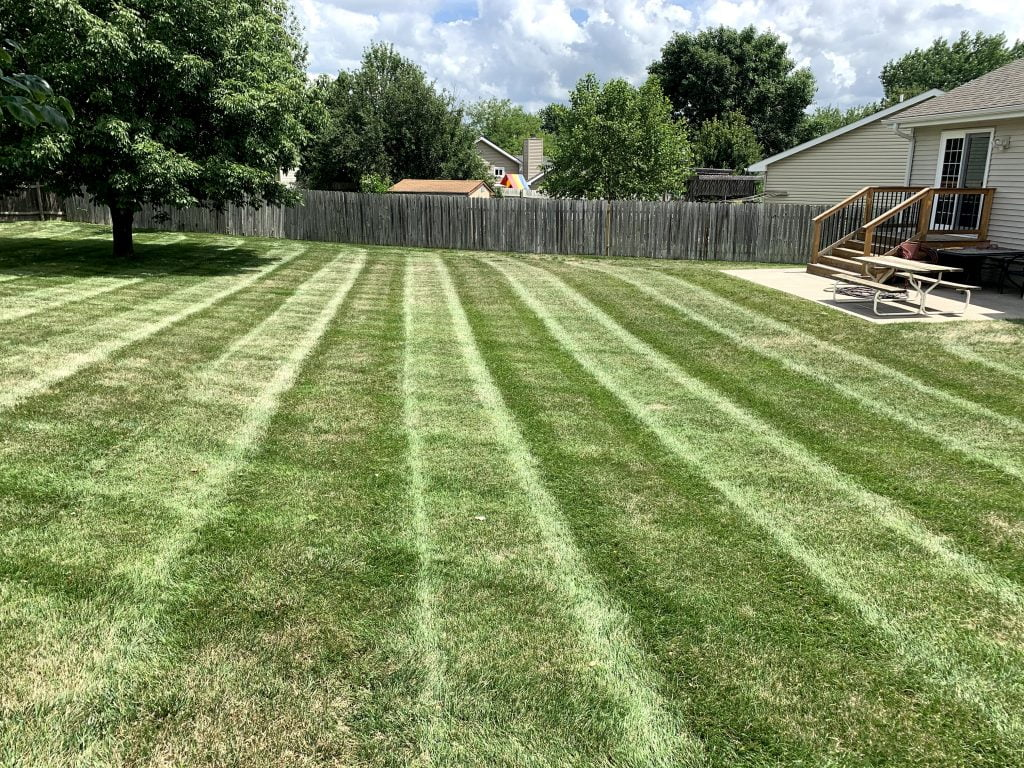 Weekly lawn care Papillion Nebraska
