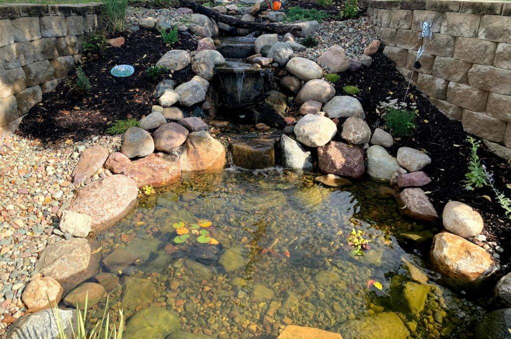 Ecosystem Koi Pond with waterfall Omaha Nebraska